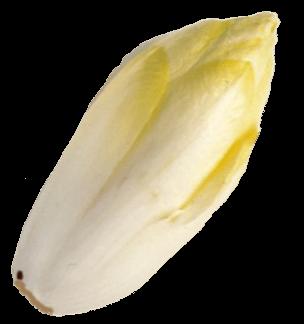 Endibia