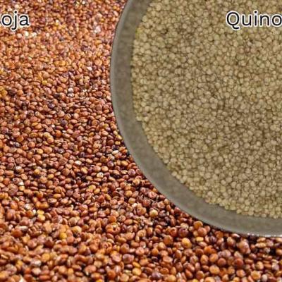 Quinoa roja y blanca Cómo hacer pan casero, Harina y levadura (I)